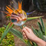 Botanische Studienreisen - Ein neuer Reise-Trend?