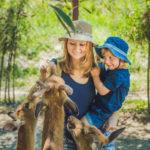 Die schönsten Zoos in Europa entdecken