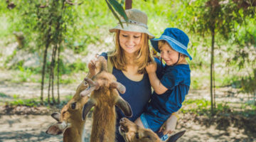Mutter mit Kind füttern Tiere