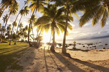Der malerische Strand auf den Fidschi-Inseln