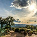 Mit Sonne durch den Winter: Eine Reise nach Südfrankreich