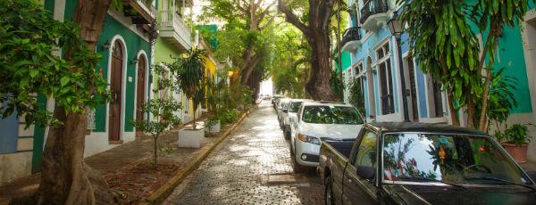 Bewachsene Straße in Puerto Rico
