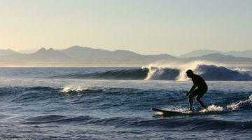 Anfänger auf einem Surfbrett im Wasser