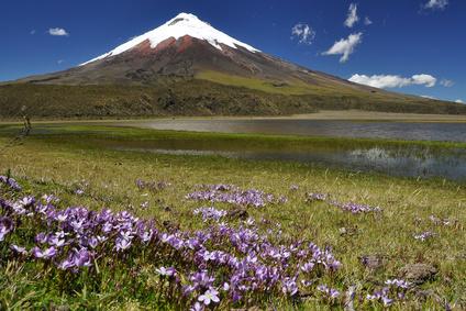 Der Vulkan Cotopaxi in Ecuador