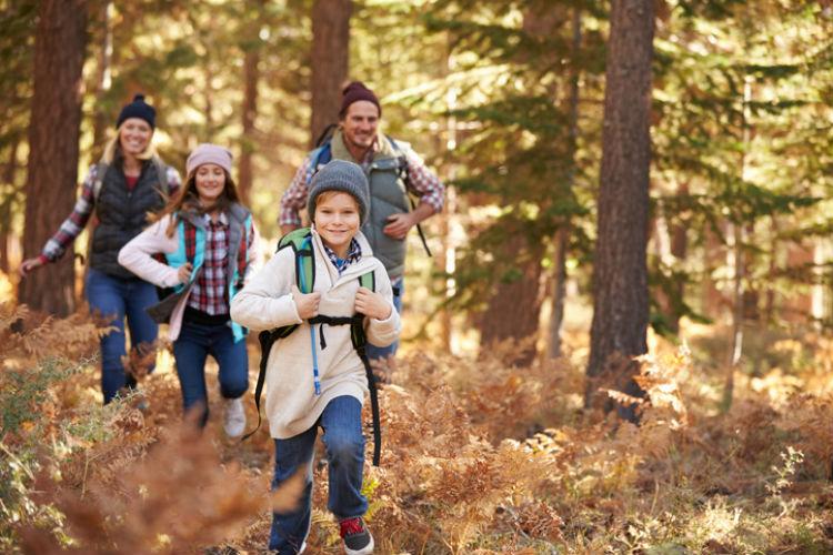 Eine Familie beim gemeinsamen Wandern im Wald