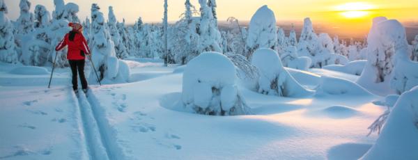 Skandinavien im Winter – mehr als eine Reise wert!