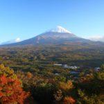 Der Aokigahara Wald zieht Selbstmörder an | Japans schaurige Seite