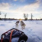 Urlaub in Grönland - Abenteurer aufgepasst!