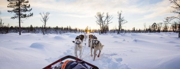 Urlaub in Grönland – Abenteurer aufgepasst!