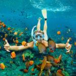 Tauchen in Hurghada - Die Unterwasserwelt des Roten Meeres entdecken